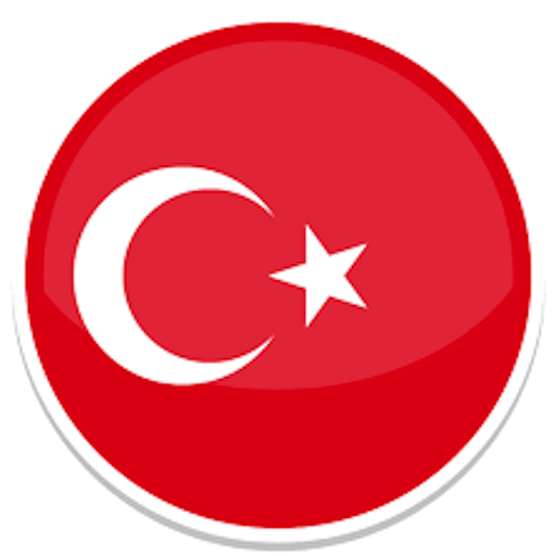 ToTurkish Translator (teams)